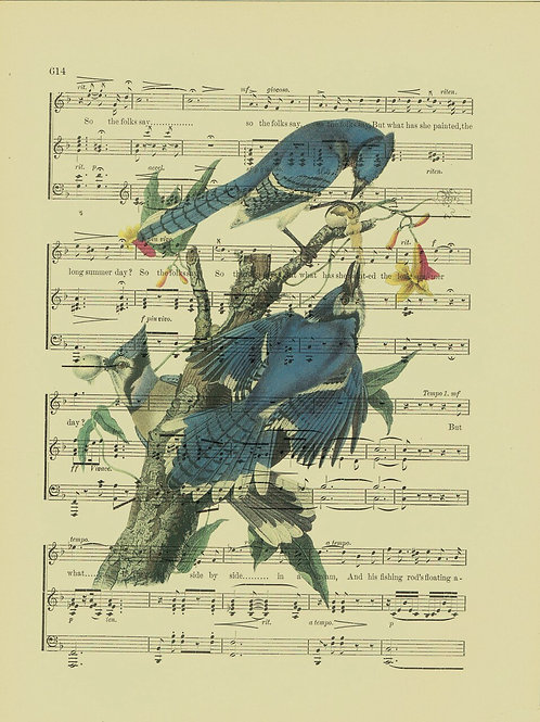Bird-Vintage Book Page Art Print No. 18