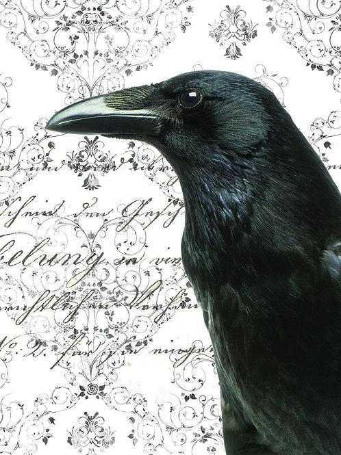 Raven Print-Number 19