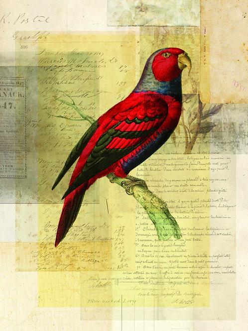 Bird Collage Print No. 116