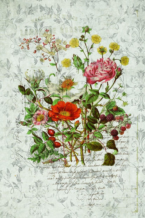 Botanical Print-No. 38