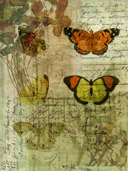 Nature Collage No 004