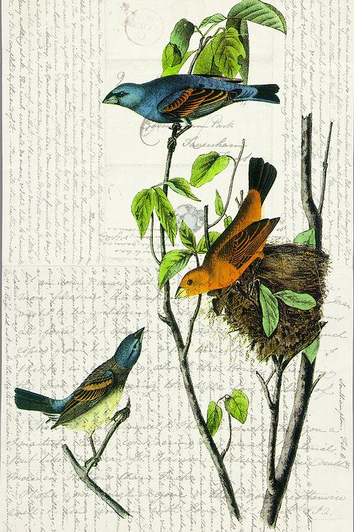 Bird Print-Number 10