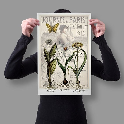 French Botanical Collage Print No. 988