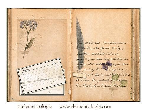 Botanical Junk Journal Double Page Sheet- No 123022-Digital Downl