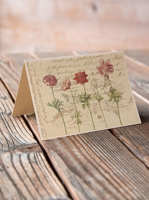 Antique Botanical Collage Print-No.027-Blank Note Card