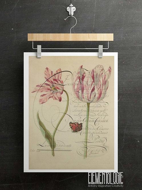 Antique Botanical Collage Print-No.046