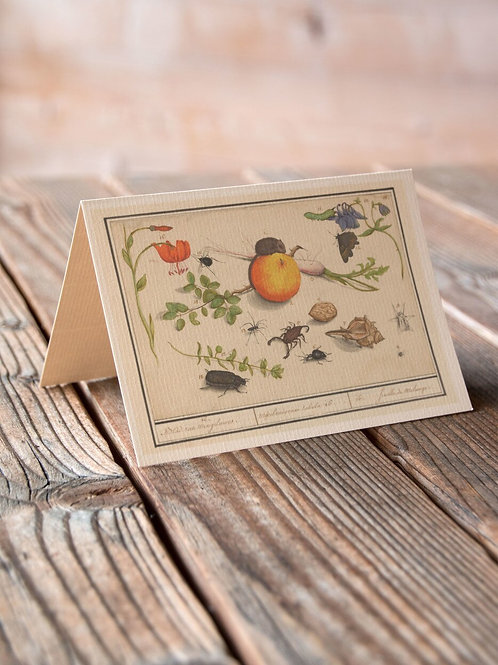 Nature Collage Print-No.080-Blank Note Card
