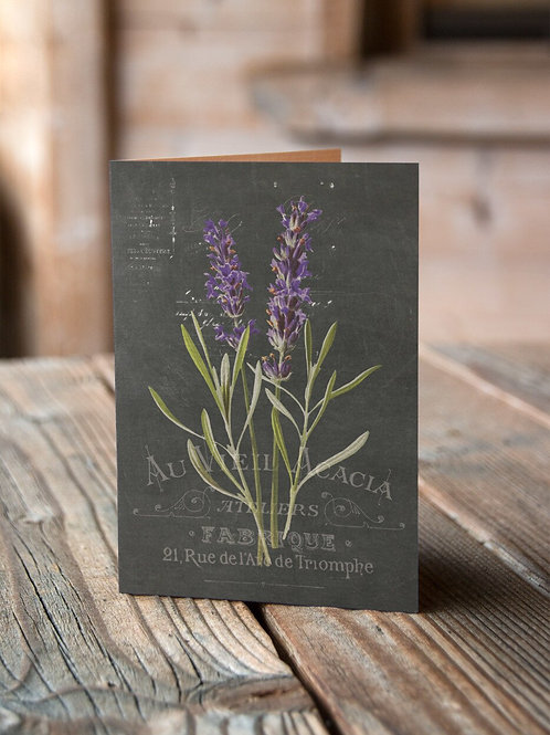 French Botanical Print No. 01-Chalkboard - Blank Note Card