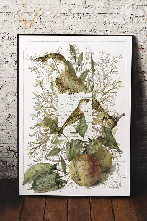 Bird Collage Print-No.33364