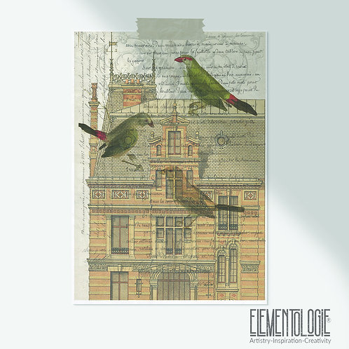 Bird Collage Print-No.507