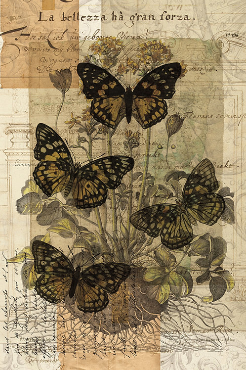 Butterfly Collage Print-No.0118
