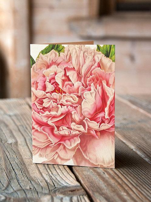 Botanical Card No. 11249-Blank Note Card