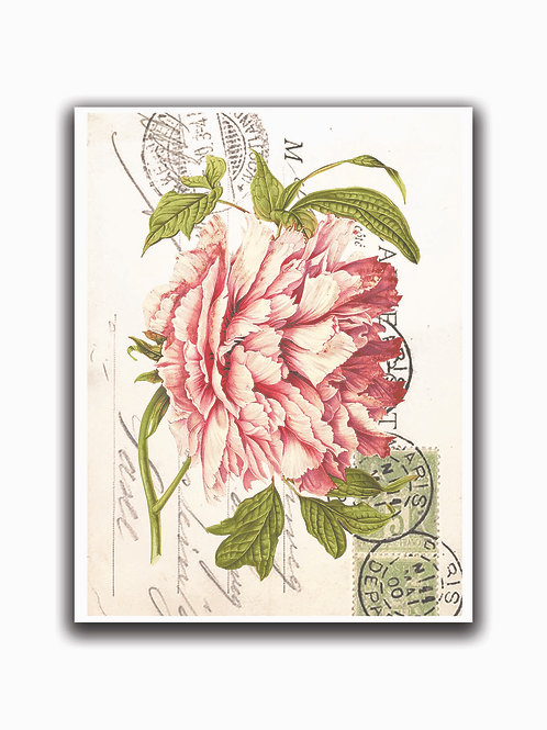 French Botanical No.01- Blank Note Card
