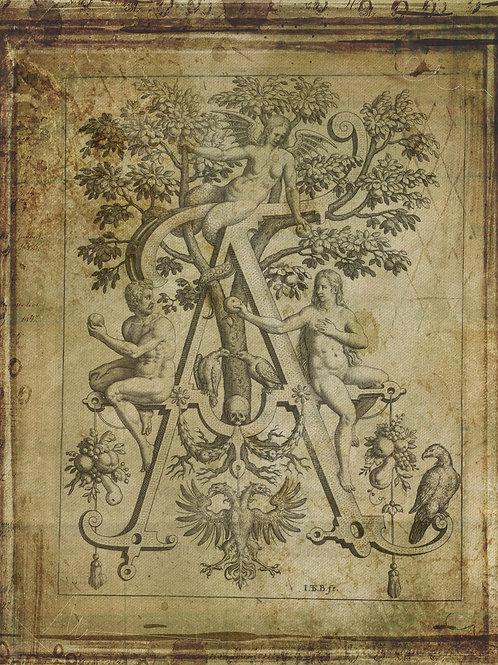 Alphabet Print No. A-998