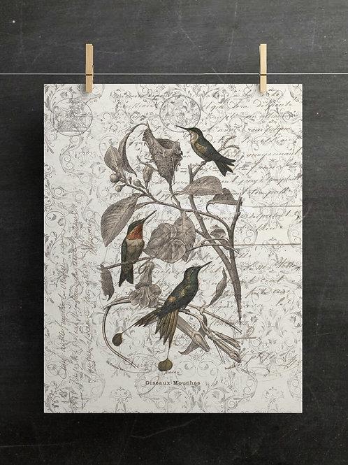 Bird Collage Print-No.1033