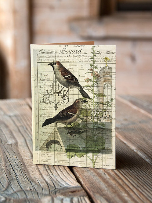 Bird Note Card No. 09-Blank Note Card