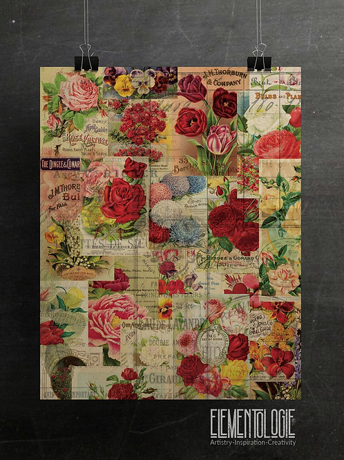 Botanical Seed Packet Collage No.02-Ledger Background