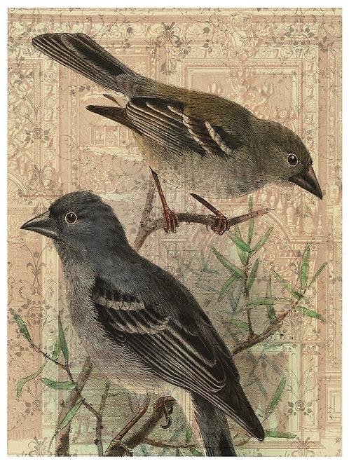 Bird Print No. 33354