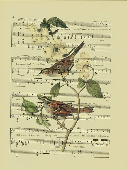 Bird-Vintage Book Page Art Print No. 13