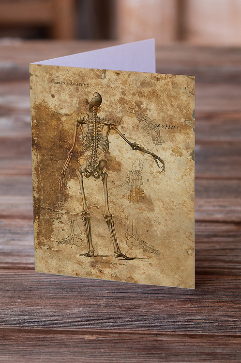 Anatomy Collage No.002-Blank Note Card