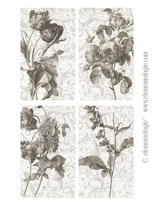 Vintage Botanical Embellishments- No 146-Digital Download