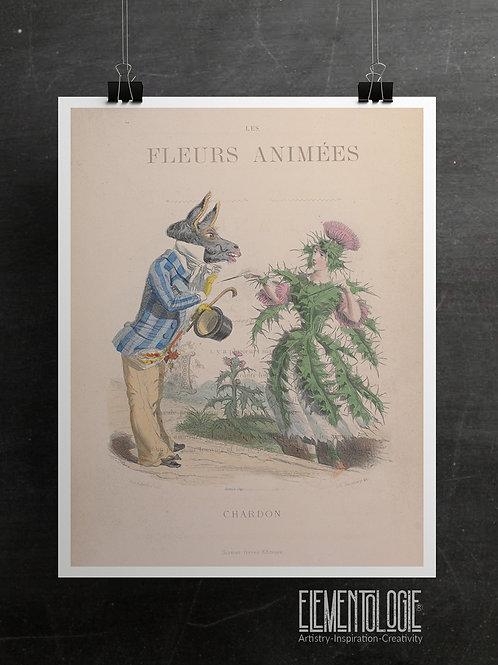 Botanical Printable print No 071