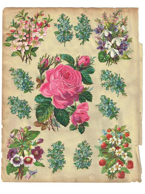 Victorian Scrap Book Page Sheet- No 226-Digital Download
