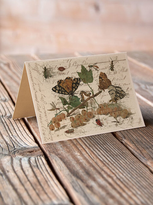 Antique Nature Collage Print-No.026-Blank Note Card