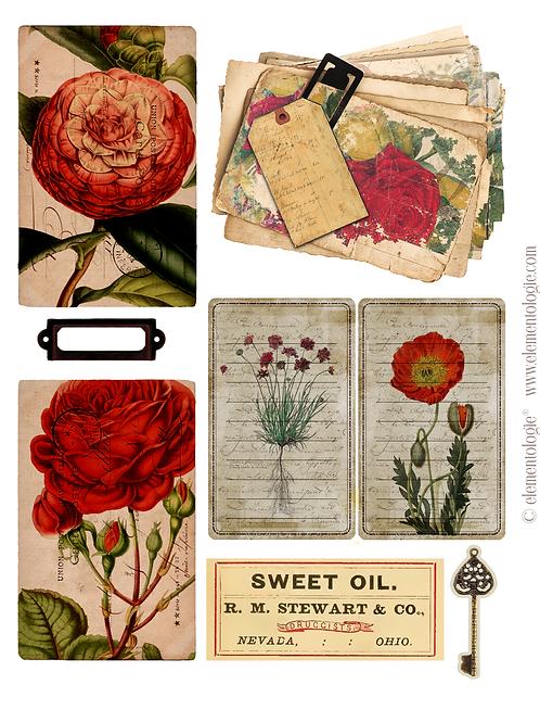 Vintage Botanical Embellishments- No 40174-Digital Download
