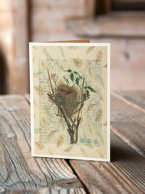 Bird Nest Print-Number 004-Blank Note Card