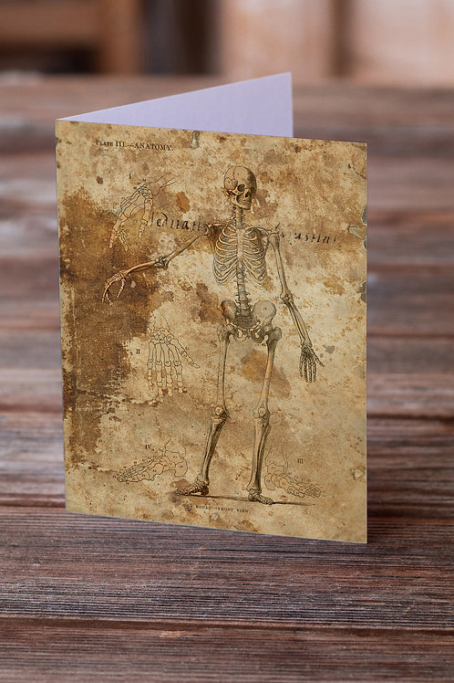 Anatomy Collage No.001-Blank Note Card
