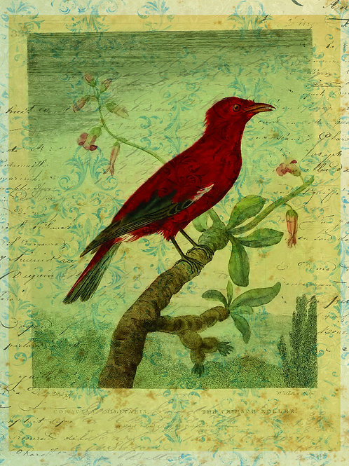 Bird Collage Print No. 010