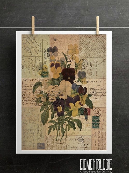 Antique Botanical Collage Print-No.047