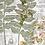 Thumbnail: Botanical Paper Pack No. 20008, Printable Paper Pack, Digital Paper