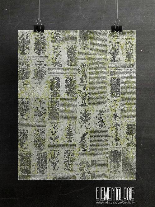 Botanical Collage No.01- Filigree Background