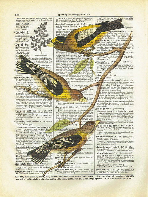 Vintage Book Page Art Print No. 06