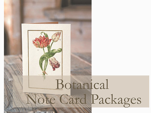 Botanical Note Card Collection Package