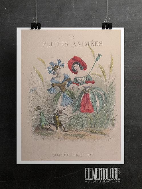 Botanical Printable print No 049