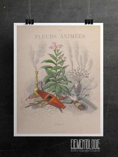 Les Fleurs Animees Collage Print-tobacco-No.051