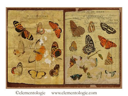 Botanical Junk JournalDouble Page Sheet- No 123000-Digital Download