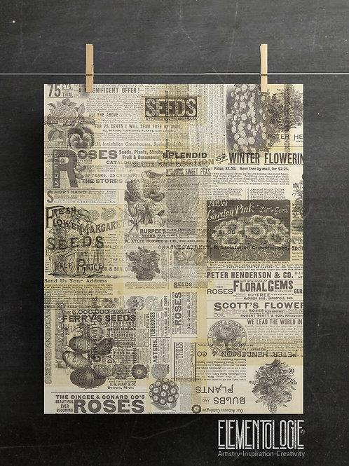 Gardening Print-Number 017