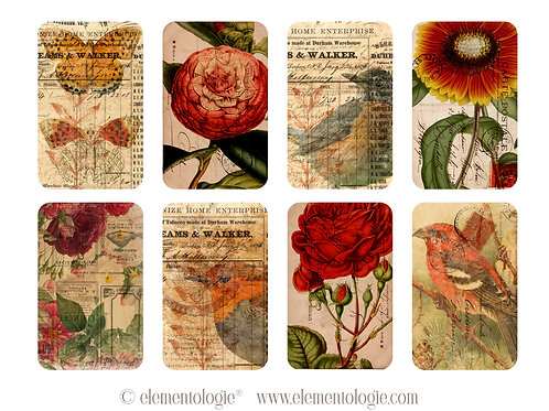 Botanical ATC Cards- No 87228-Digital Download