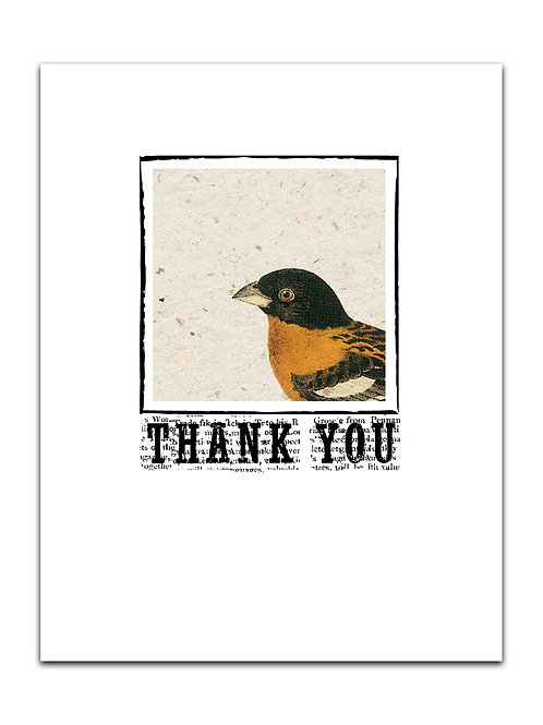 Bird Thank You No. 8880TY-Blank Note Card