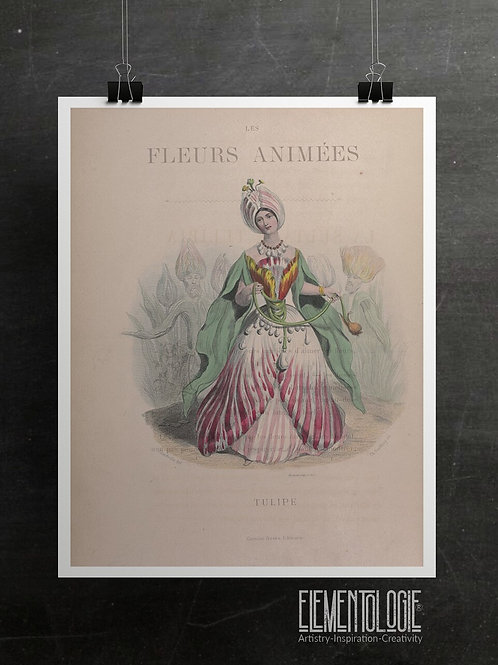 Les Fleurs Animees Collage Print-tulip-No.052