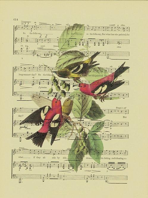 Bird-Vintage Book Page Art Print No. 14