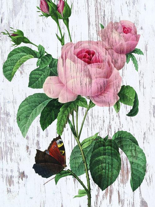 Botanical Printable print No 022