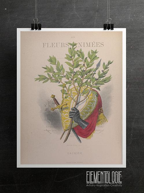 Botanical Printable print No 058