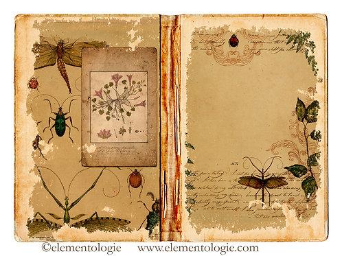 Botanical Junk Journal Double Page Sheet- No 123045-Digital Downl