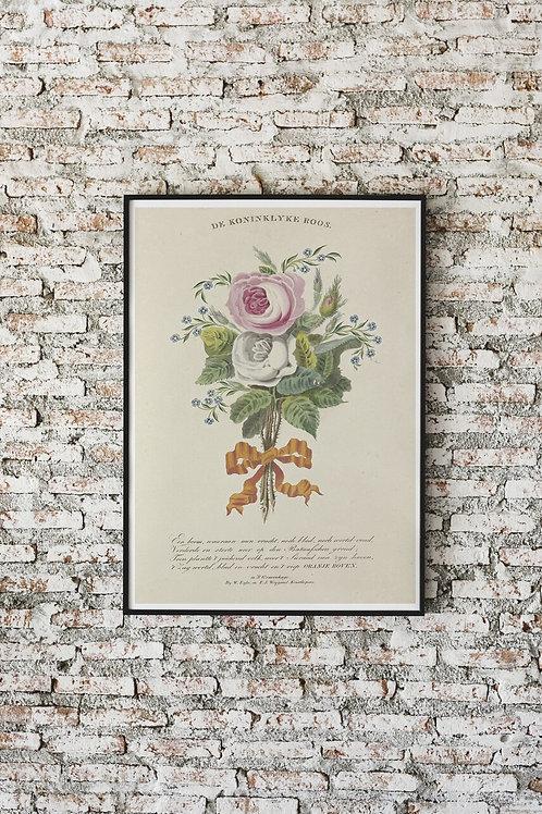 Antique Botanical Print-No.084