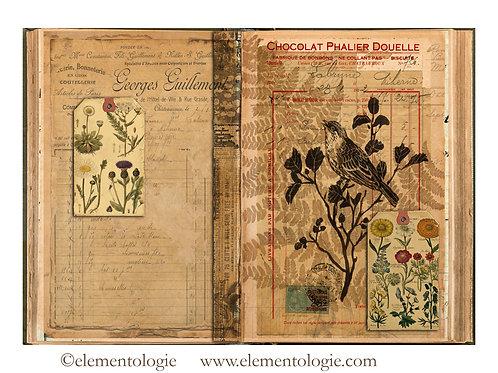 Botanical Junk JournalDouble Page Sheet- No 123001-Digital Download
